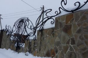 Wrought Iron Fence #28