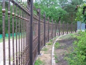 Wrought Iron Fence #47